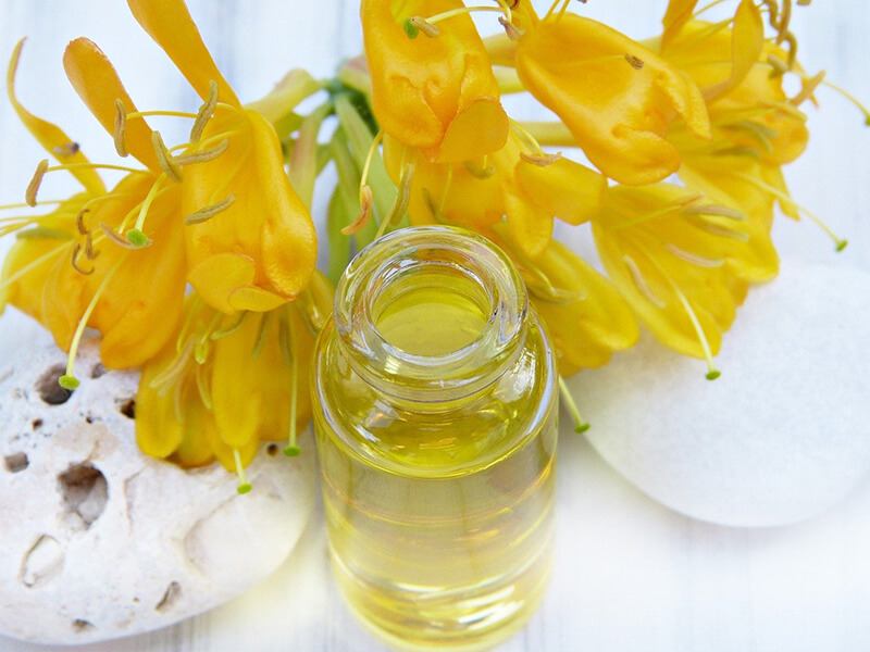 jojoba uses diy beauty