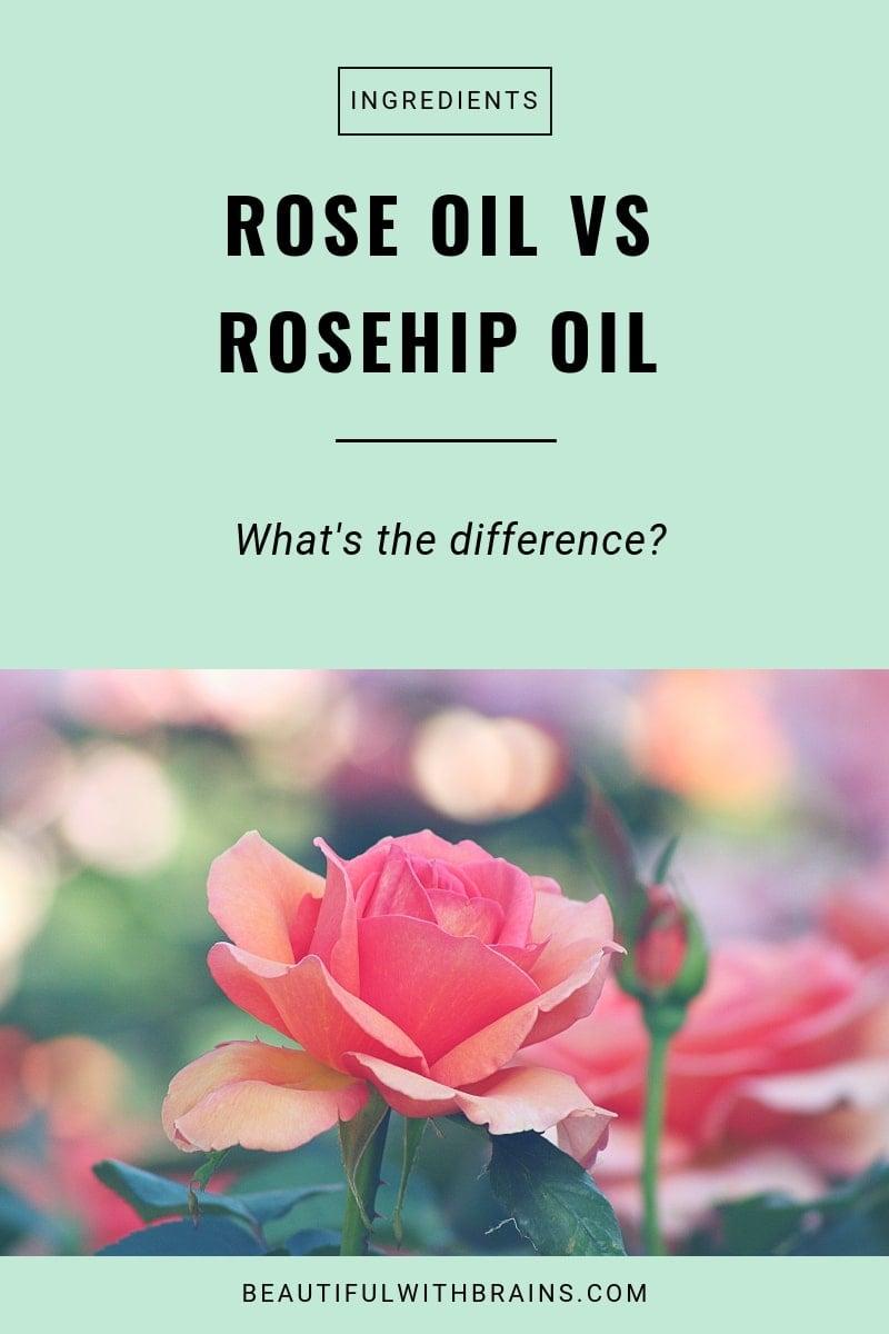 rose oil vs rosehip oil 01