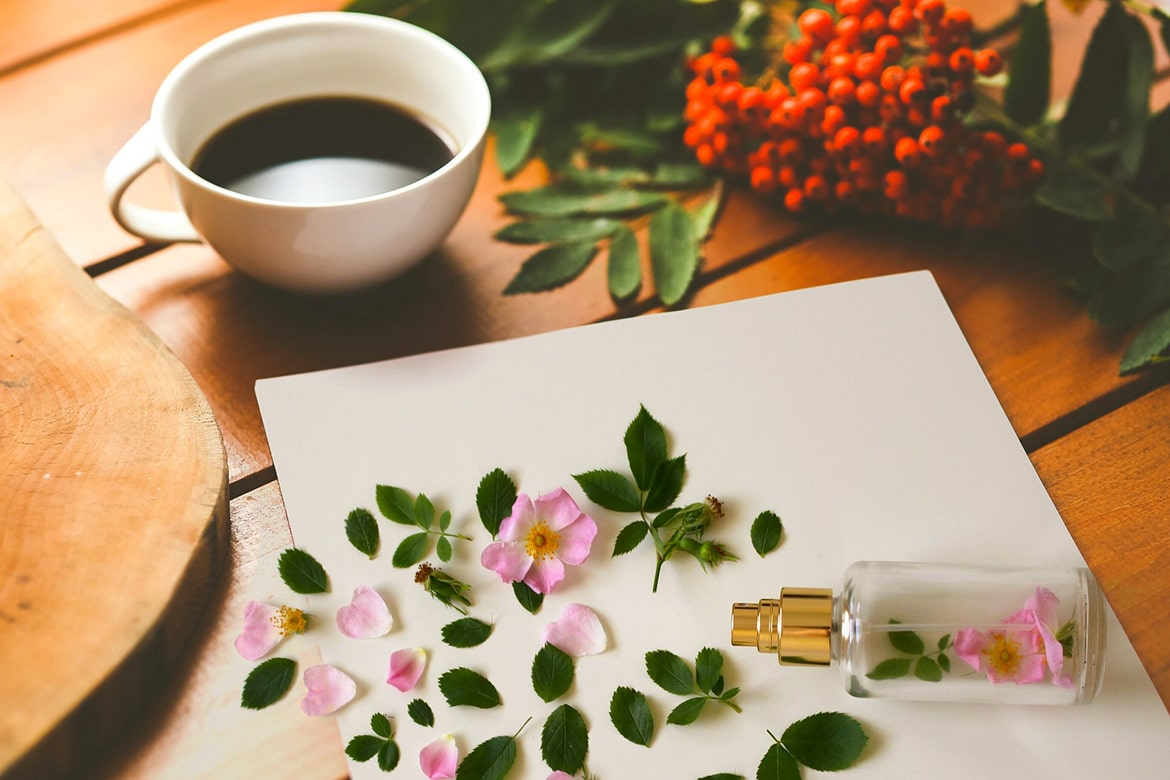 where to buy natural skincare products