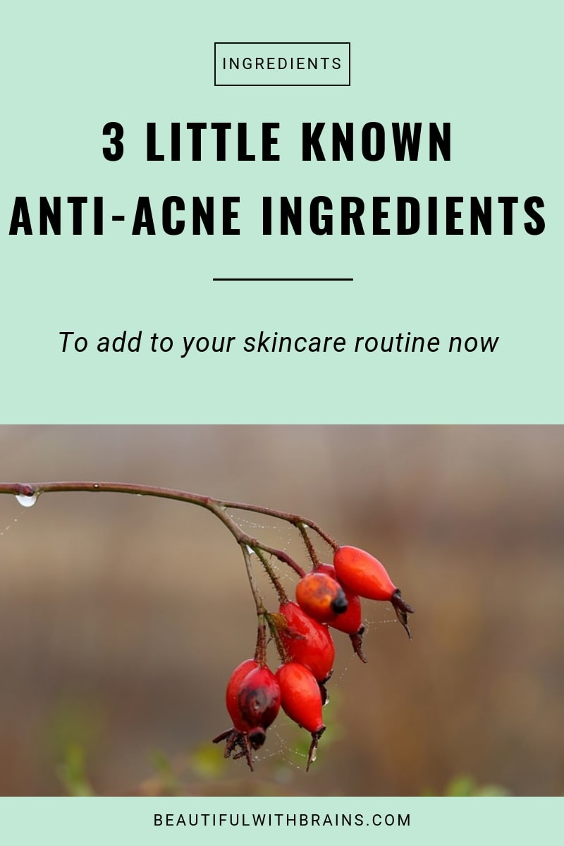 little known anti-acne ingredients