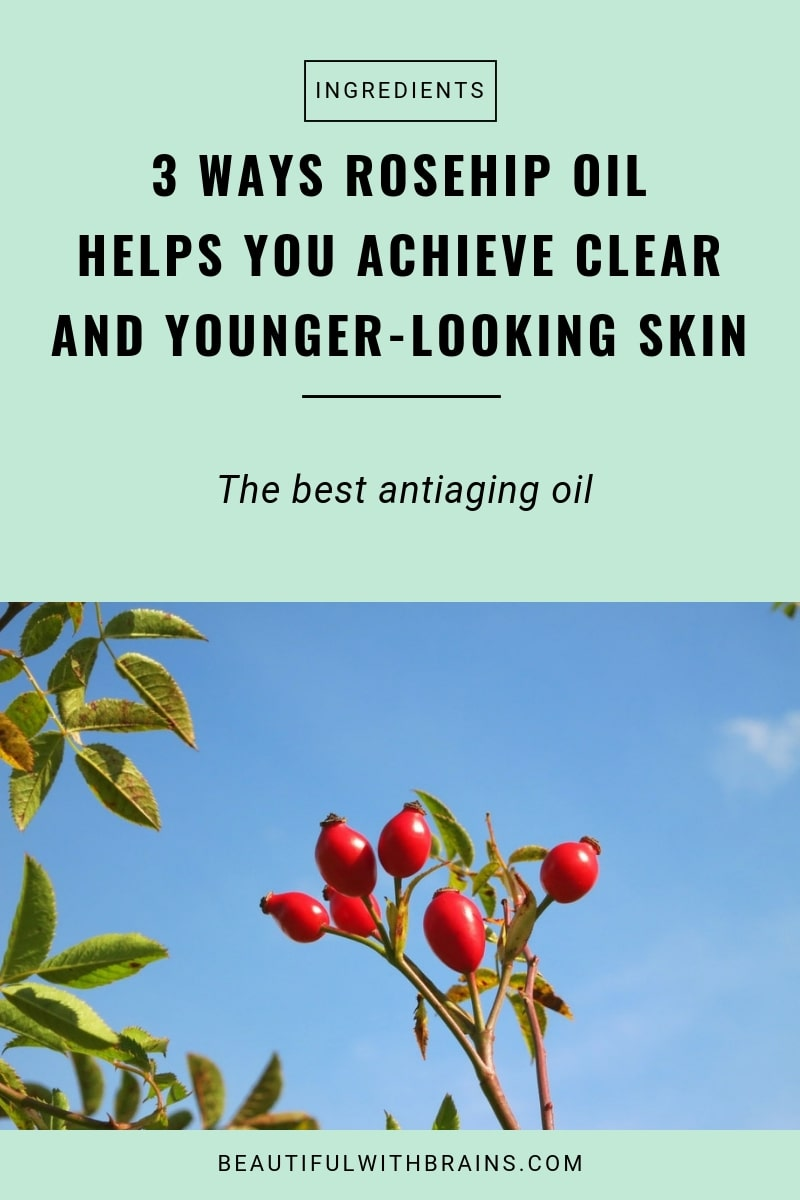 rosehip oil best antiaging oil